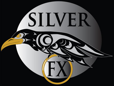 Symbols and their meaning | Silver FX